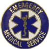 View Collar Device Emergency Medical Service Gold 1 PAIR